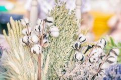 Конец-вверх творческих букетов высушенных цветков с высушенной ветвью хлопчатника или стержня хлопка с пушистыми белыми шариками  Стоковое Изображение RF