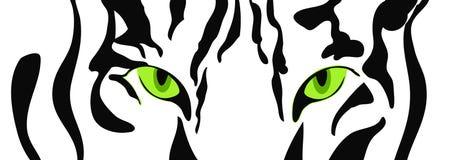 Конец-вверх тигра головной, стоковые изображения rf