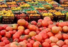Конец-вверх томатов вишни и груши в контейнерах Стоковая Фотография RF