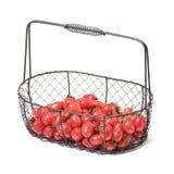 Конец-вверх томатов вишни Фотография студии на белой предпосылке 6 разнообразий вишни томатов Стоковые Фотографии RF