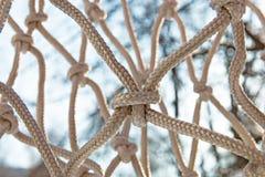 Конец-вверх узлов решетки Справочная информация Стоковые Изображения