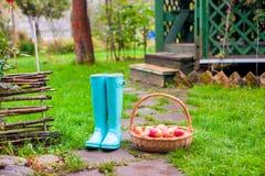 Конец-вверх цветастых резиновых ботинок и большой корзины стоковое фото