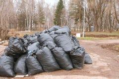 Конец-вверх черных мешков для мусора сложенных вверх в парке города Стоковое Фото