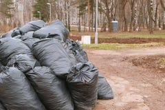 Конец-вверх черных мешков для мусора сложенных вверх в парке города Стоковая Фотография