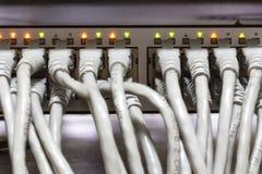 Конец-вверх эпицентра деятельности и кабелей ethernet сети Стоковые Изображения RF