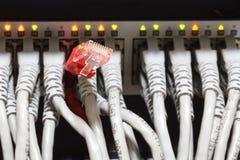 Конец-вверх эпицентра деятельности и кабелей ethernet сети Стоковые Фото