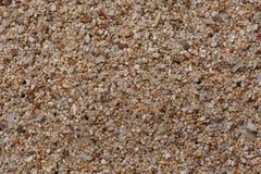 Конец-вверх Extream к песку щепок коралла и раковины Стоковое Фото