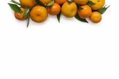 Конец-вверх Tangerines на белой предпосылке Стоковое Фото