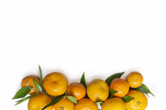 Конец-вверх Tangerines на белой предпосылке Стоковая Фотография RF