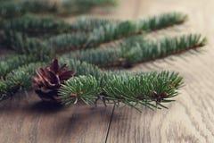 Конец ветви ели вверх на таблице дуба Стоковые Фото