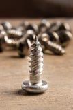 Конец винта металла вверх стоковое изображение rf