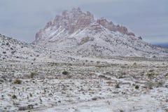 Конец горы Флориды вверх в зиме стоковая фотография rf