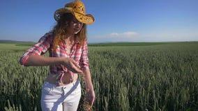 Конец девушки фермера вверх льет пригорошню зерен пшеницы в пшеничном поле акции видеоматериалы