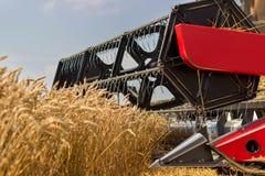 Конец жатки зернокомбайна вверх Жатка зернокомбайна жать пшеницу Зерно жать зернокомбайн позволяет gps компьютера зернокомбайнов  Стоковые Фотографии RF