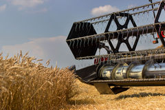 Конец жатки зернокомбайна вверх Жатка зернокомбайна жать пшеницу Зерно жать зернокомбайн позволяет gps компьютера зернокомбайнов  Стоковое Изображение
