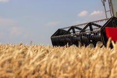 Конец жатки зернокомбайна вверх Жатка зернокомбайна жать пшеницу Зерно жать зернокомбайн позволяет gps компьютера зернокомбайнов  Стоковое фото RF