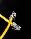 Конец кабеля Lan вверх Стоковая Фотография RF