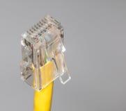 Конец кабеля Lan вверх Стоковое фото RF