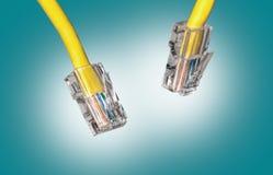 Конец кабеля Lan вверх Стоковое Изображение RF