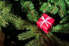 Конец коробки настоящего момента красного цвета украшения рождественской елки вверх Стоковое Изображение