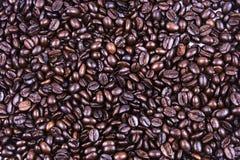 Конец кофейного зерна вверх Стоковая Фотография RF