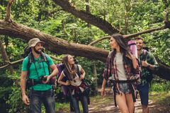 Конец низкого угла вверх по фото 4 друзей наслаждаясь красотой природы, пеший туризм в одичалом лесе, ища славное место для лагер стоковое изображение rf