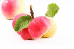 конец осени яблок вверх Стоковая Фотография RF