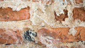 Конец предпосылки стены кирпича великолепный вверх Стоковая Фотография RF
