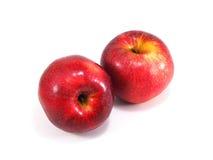 конец предпосылки яблок один красный цвет вверх по белизне стоковые фотографии rf