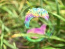 Конец пузыря мыла вверх Стоковая Фотография