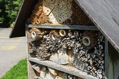 Конец древесины дома пчелы вверх по взгляду Стоковые Фото
