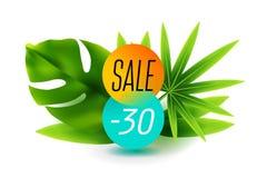 Конец скидки продажи лета дизайна знамени сезона с тропической листвой, предпосылкой иллюстрации Смогите использованный для подар Стоковая Фотография
