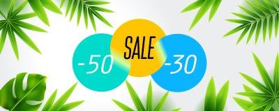 Конец скидки продажи лета дизайна знамени сезона с тропической листвой, предпосылкой иллюстрации Смогите использованный для подар Стоковые Изображения RF