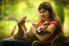 Конец собаки чабана щенка объятия девушки подростка вверх по фото Стоковые Изображения RF