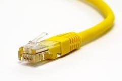 Конец соединителя интернета вверх Стоковые Изображения RF