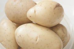 Конец сырцовой картошки вверх на контейнере стоковые фото