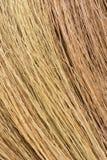 Конец текстуры травы ручки веника вверх по предпосылке взгляда Стоковое Фото