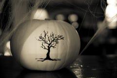 Конец украшения сквоша хеллоуина концепции белый вверх стоковое изображение