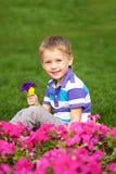 Конец цветка мальчика пахнуть вверх. Стоковое Изображение