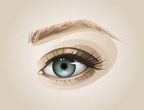 Конец человеческого глаза вверх иллюстрация штока