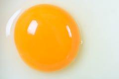 Конец яичного желтка вверх Стоковые Изображения RF