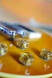 Конец lespaul электрической гитары вверх стоковые фото