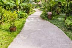 Конкретная дорожка в тропическом саде Стоковое Фото