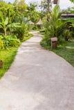 Конкретная дорожка в тропическом саде Стоковая Фотография RF