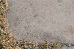 Конкретная рамка с сухой травой Стоковое Изображение