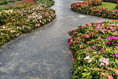 Конкретная тропа в саде Стоковые Фото