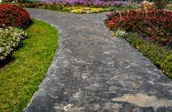 Конкретная тропа в саде Стоковое Фото