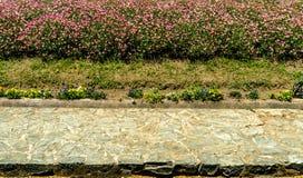 Конкретная тропа в саде Стоковое Изображение RF
