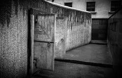 Конкретные двери стоковая фотография rf