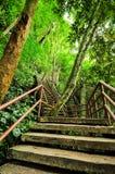 Конкретные лестницы с стальным рельсом Стоковая Фотография RF